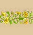 arnica plant pattern on color background vector image