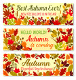 autumn banner of fall season forest nature frame vector image vector image