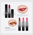set of color lipsticks and demonstration vector image vector image