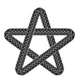 star shoeslaces icon simple style vector image vector image