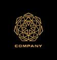 abstract geometry mandala logo vector image vector image