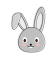 cute bunny cartoon vector image vector image