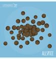 allspice flat design icon vector image vector image