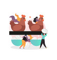 poultry farming concept for web banner vector image