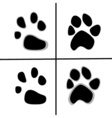 prints of animal paws flat style vector image vector image