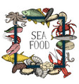 seafood vintage hand drawn background vector image