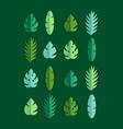 set paper palm leaves vector image