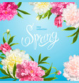 spring collection background with peones vector image vector image
