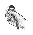 tit bird in hand sketch vector image vector image
