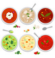bowls different types soup vector image
