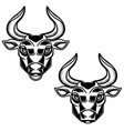 bull head isolated on white background design vector image vector image