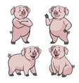 pig wit cartoon style set vector image