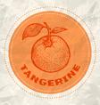 tangerine vintage paper vector image vector image