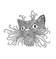 black and wite cat with ethnic floral ornaments vector image