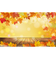 autumn nature background with colorful leaves