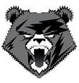 bear image design tattoo emblem logo vector image vector image