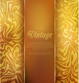 gold vintage background vector image vector image