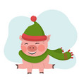 pig sits with green hat vector image
