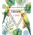 Tropical paradise with watercolor parrots and palm