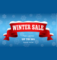 big winter sale concept background realistic vector image vector image