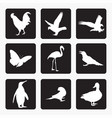 birds icons silhouettes vector image vector image