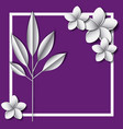 flower and leafs frame decoration vector image