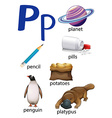 Things that start with the letter P vector image vector image