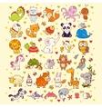 cute set animals vector image vector image