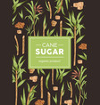 design packaging with sugarcane pattern on vector image vector image