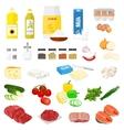 food ingredients vector image