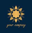 sun healthy logo vector image vector image