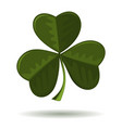 trifoliate clover - symbol of ireland vector image vector image