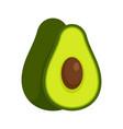 avocado fruit icon flat style