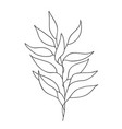 one line drawing abstract plant hand drawn modern vector image