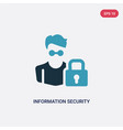 two color information security analyst icon from vector image vector image