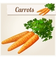 Carrots Detailed Icon vector image
