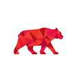 American Black Bear Walking Low Polygon vector image