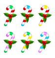Colourful candy canes with holly berry vector image