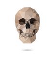 crystal skull vector image