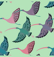 seamless pattern with ibis birds vector image vector image