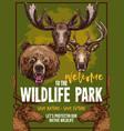 wild animals zoo sketch wildlife poster vector image vector image