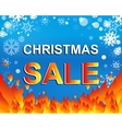 Big winter sale poster with CHRISTMAS SALE text vector image