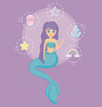 cute siren with set icons vector image