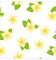 frangipani seamless vector image
