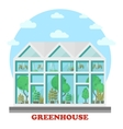 Glass greenhouse with plant in pot and tree vector image vector image