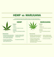 hemp vs marijuana horizontal infographic vector image vector image