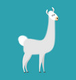lama isolated cute alpaca animal south american vector image vector image