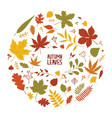 round autumn composition with dried tree leaves vector image