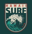 vintage hawaii surfing colorful label vector image