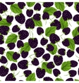 Blackberry seamless pattern vector image vector image